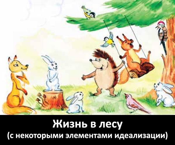 Wild_Life1